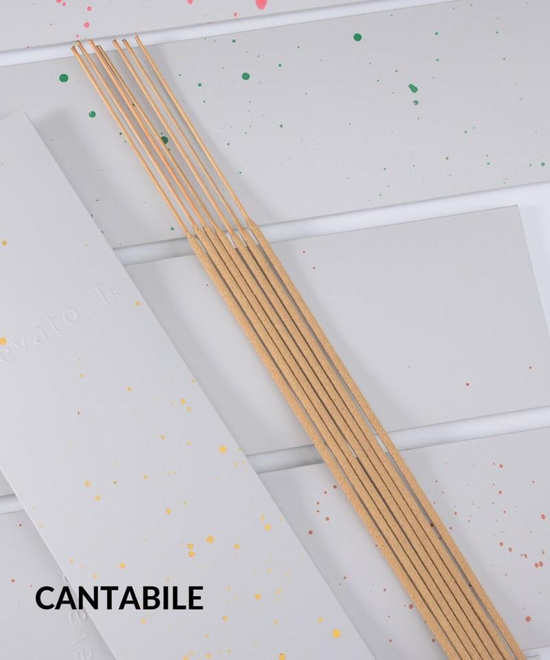 EVT9905 Elevato.t香氛線香-CANTABILE